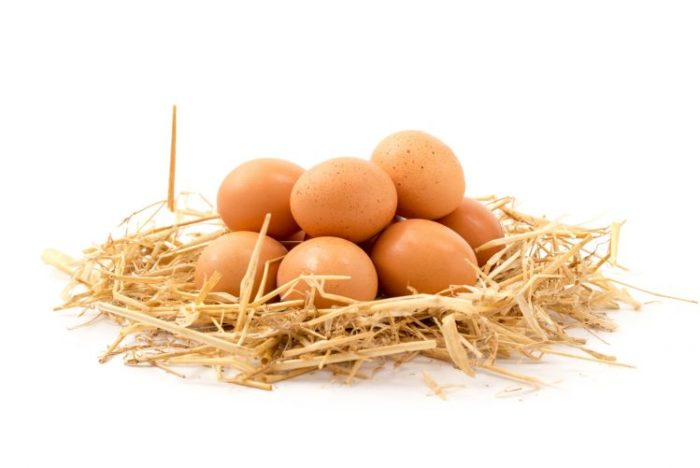 Ograniczasz spożycie jajek To zalecenie żywieniowe jest już nieaktualne