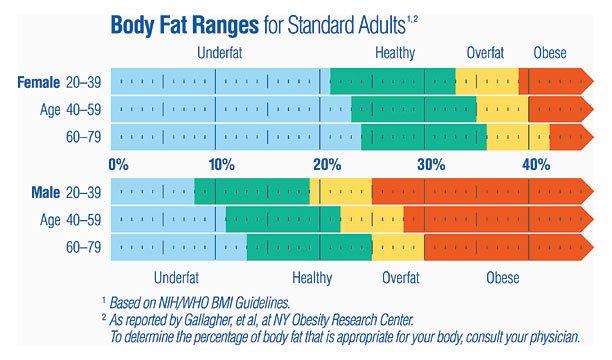 zawartość tłuszczu w ciele